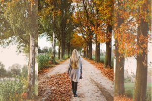 election-sabbath-fall-leaves